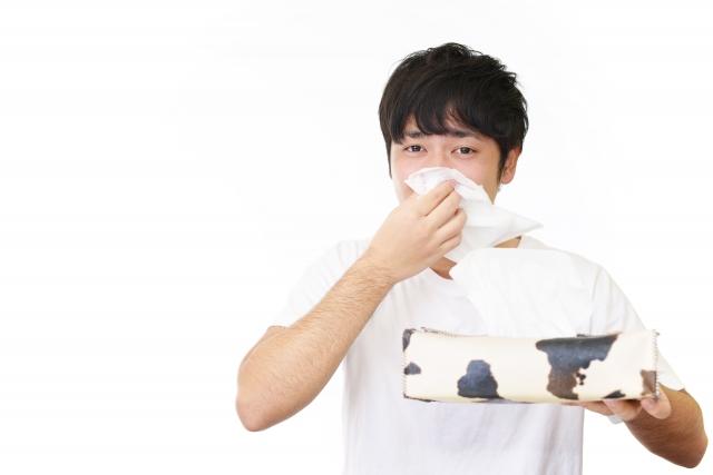 【花粉症でぎっくり腰に!?】 神奈川区 ゼロスポ鍼灸整骨院 大口 白楽